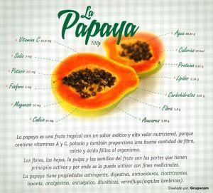 AlimentandoMiBienestar-Papaya
